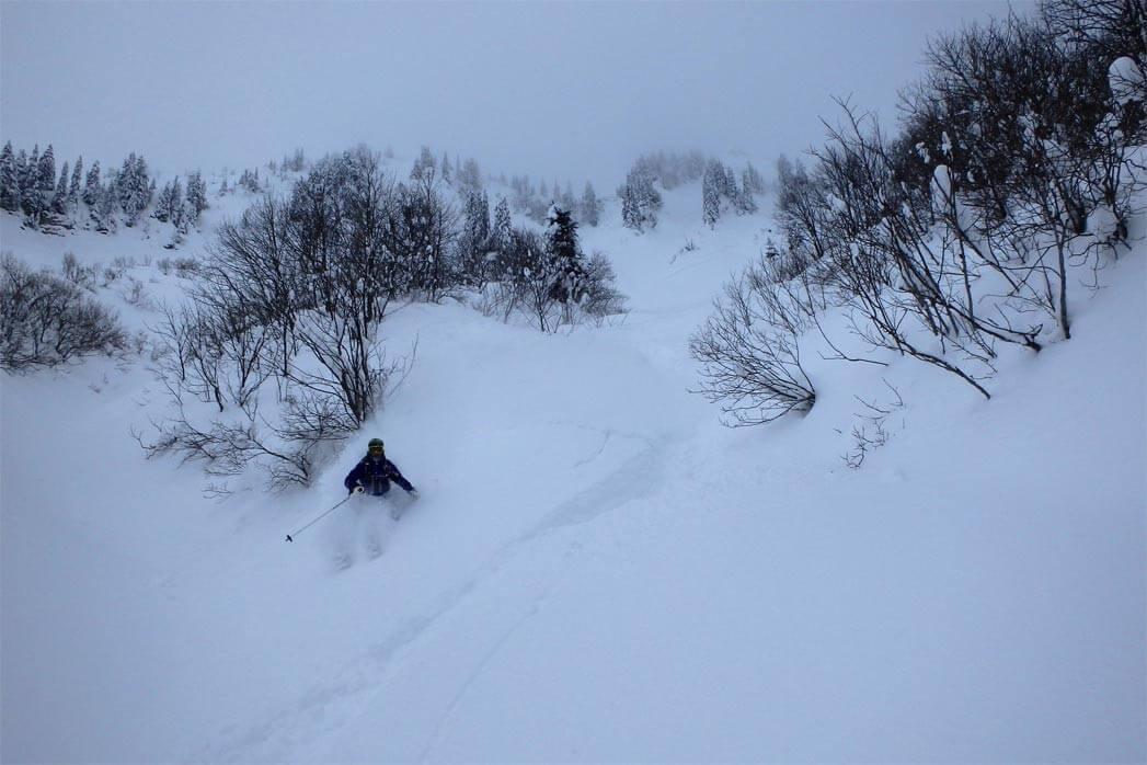 ski de poudreuse morzine